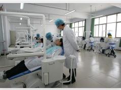 口腔医学类